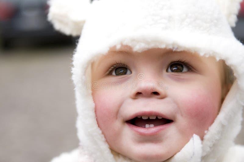 little lyckliga får royaltyfria foton