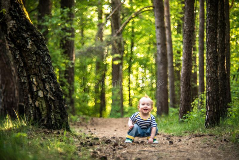 Little man in forest royalty free stock images