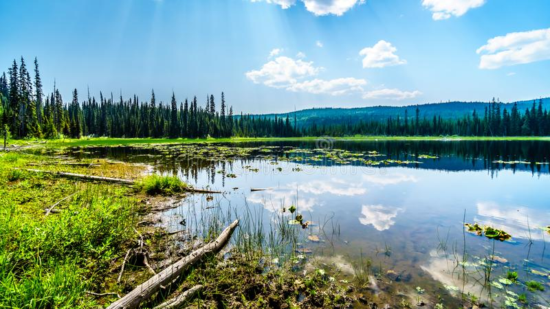 Little McGillivray Lake, near Sun Peaks in British Columbia, Canada. Little McGillivray Lake, a high alpine lake near the alpine village of Sun Peaks in the royalty free stock photos
