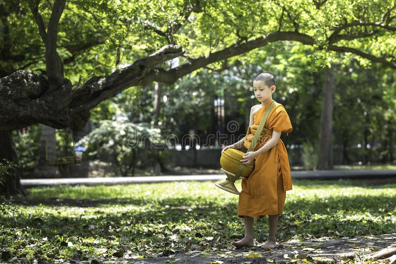 A little novice is walking alms in a garden with forests. BANGKOK, THAILAND – APRIL 8: A small summer novice, white skin, wearing a yellow cloth, walking royalty free stock photography