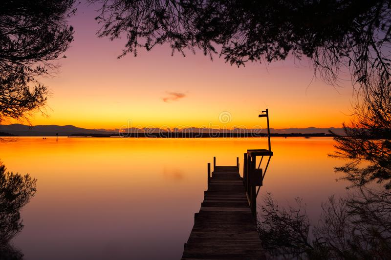 Old timber jetty at dawn framed by trees stock images