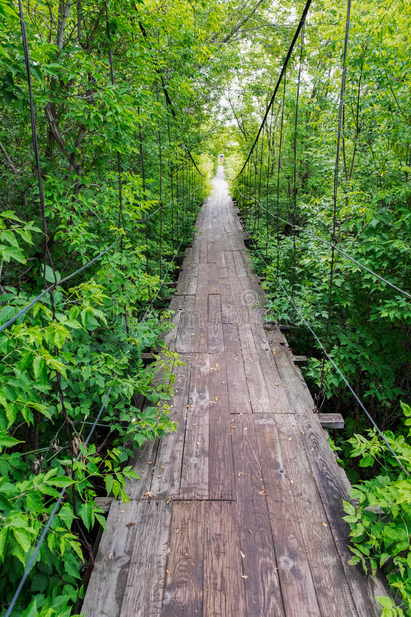Little old wooden bridge in the village. Little old wooden suspension bridge in the village among the green trees in daylight saving time stock image