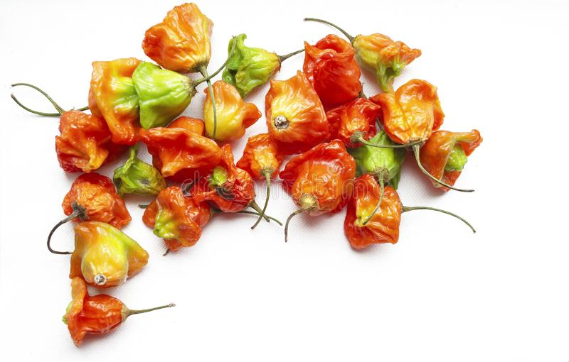 Little peppers on a white isolated background. Delicious seasoning for cooking. Background for an inscription stock photo