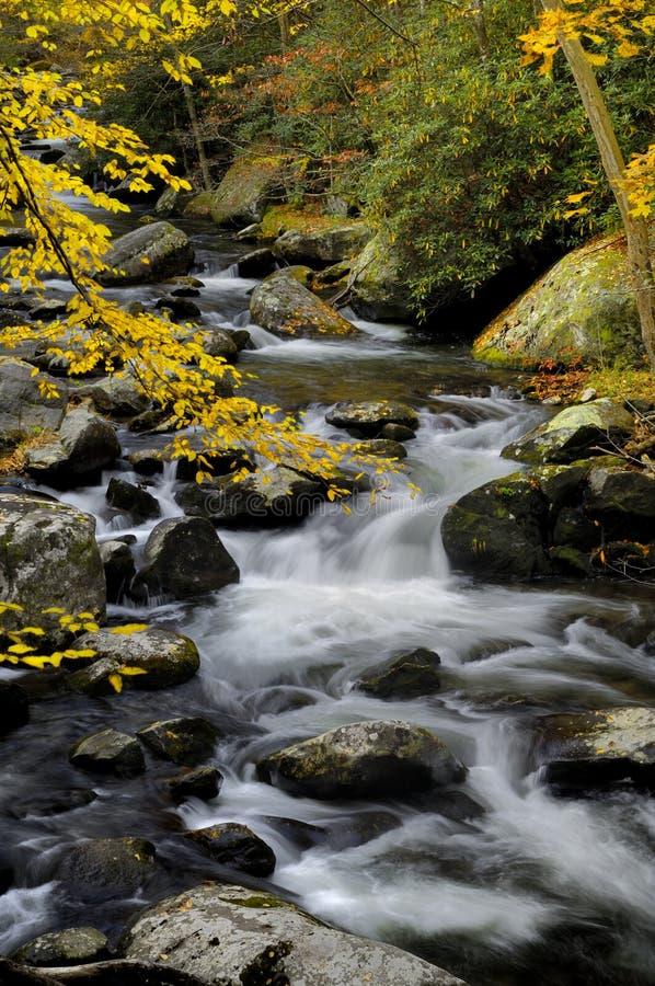 Little Pigeon River em Tremont em Great Smoky Mountains fotos de stock royalty free