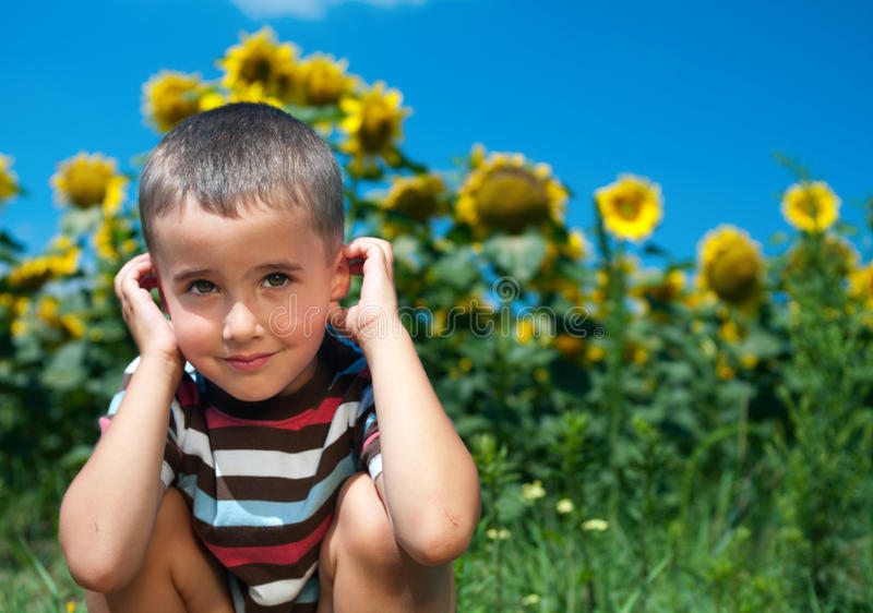 Little Plays Hide-and-seek Royalty Free Stock Image