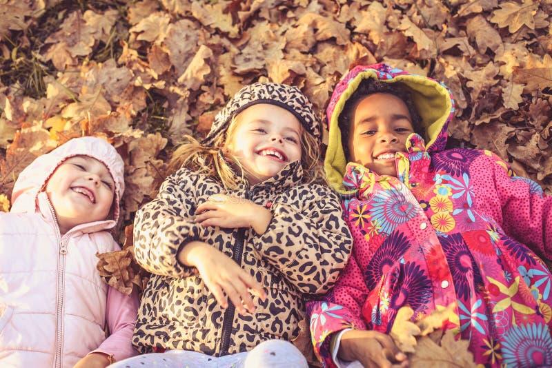 Smiling little girls on fallen leaves. Little preschool girls on fallen leaves. Fun on leaves. From above stock photo
