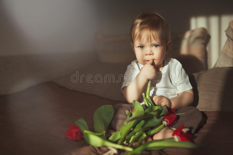 A little pretty boy looks into the camera and holds his finger in his mouth. Next to him is a bouquet of colorful tulips. Home and royalty free stock photos