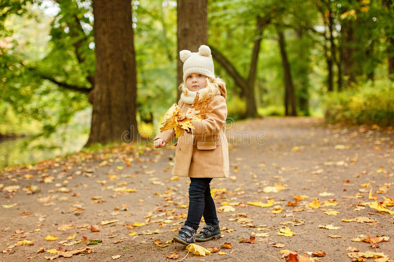 Little pretty girl in a beige coat, autumn in the park collects stock photos