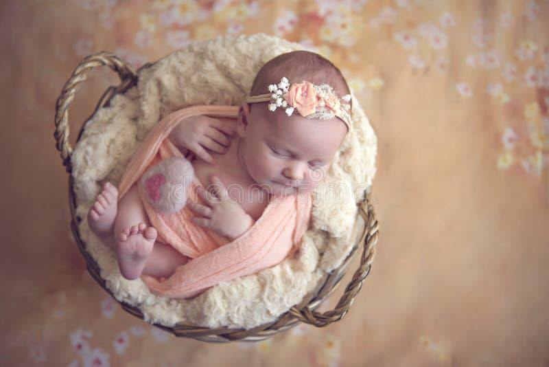 Little princess baby E. Perfect flower stock photo