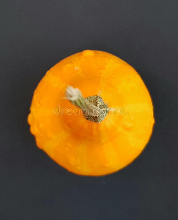 Little pumpkin over black background. stock photo