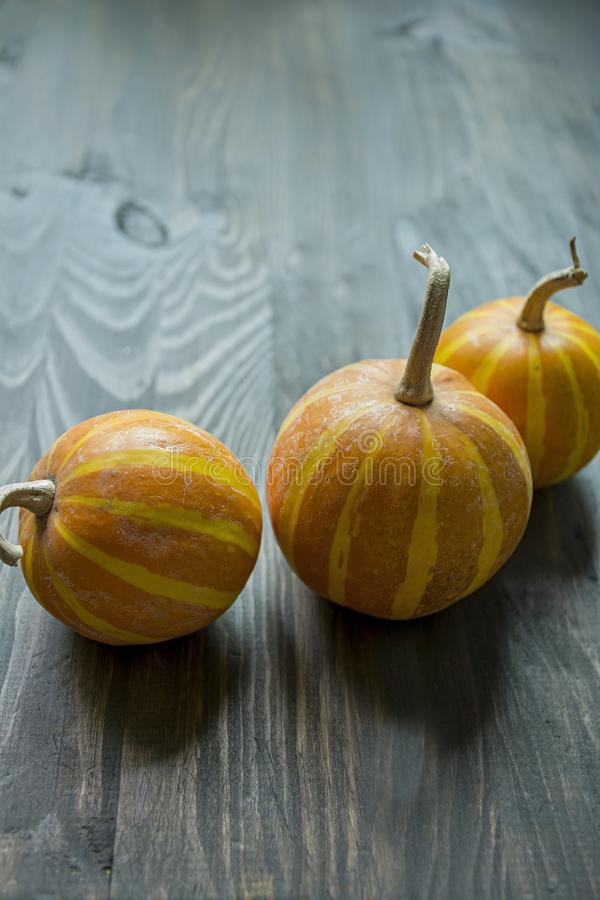 Little pumpkins. Decorative pumpkin on the table. Halloween. View from the side. Dark background stock image