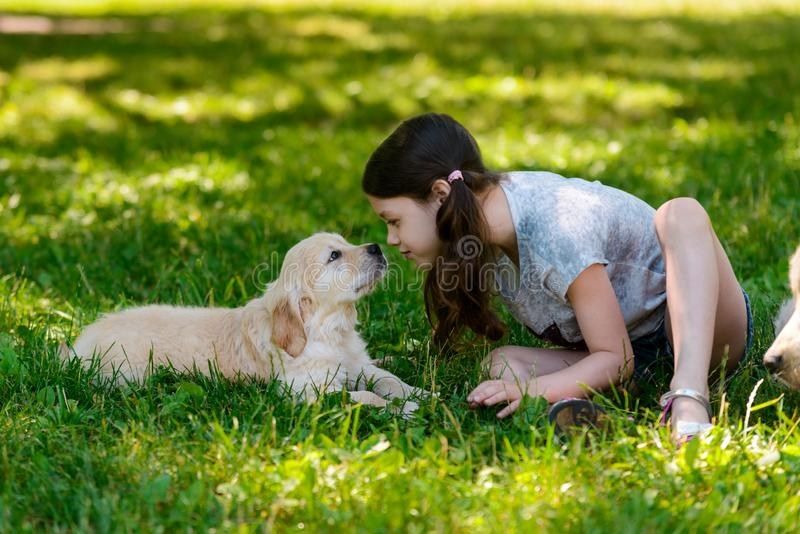 Little puppy and girl. Look into each other`s eyes and almost touch nose to nose. Cute photo of dog and its owner royalty free stock photography