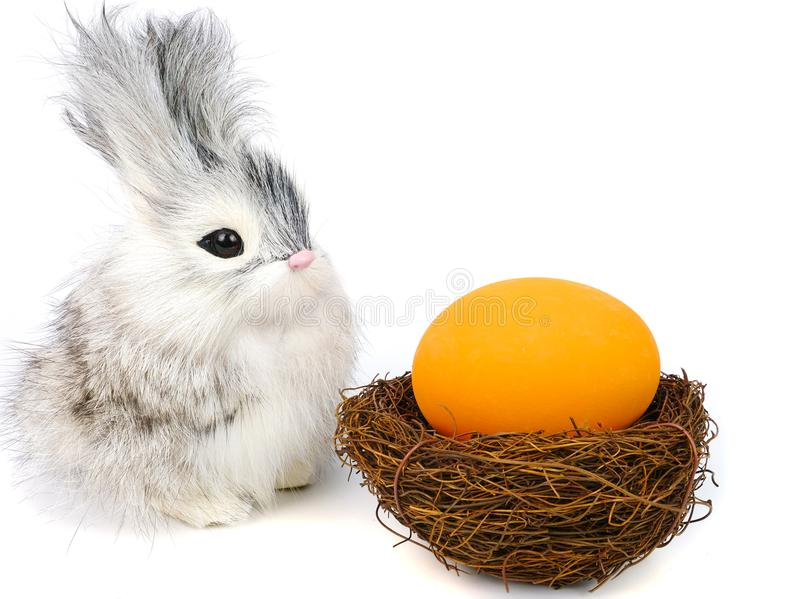 little rabbit and ester eggs royalty free stock photo