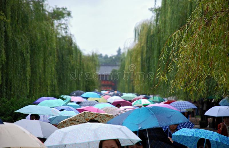 A little rain royalty free stock image