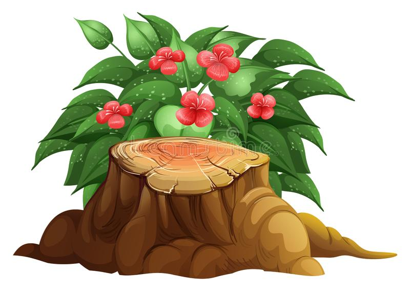Little red flowers and stump wood on white background. Illustration royalty free illustration