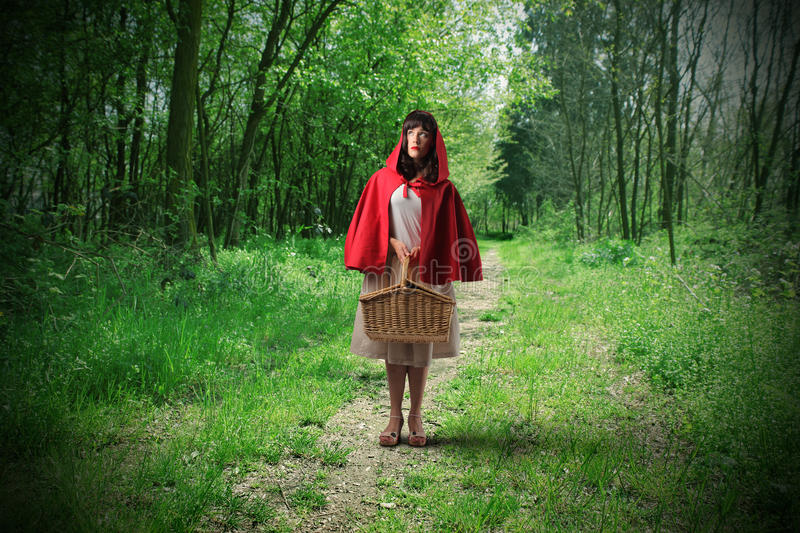 Download Little Riding Red Hood stock image. Image of fear, basket - 13959077
