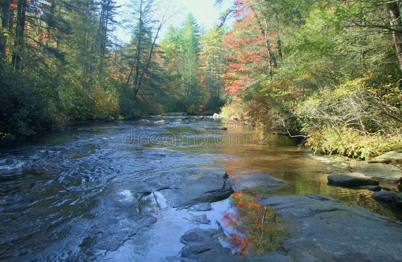 Little River in North Carolina. The Little River flowing through DuPont State Forest in the North Carolina mountains stock photo