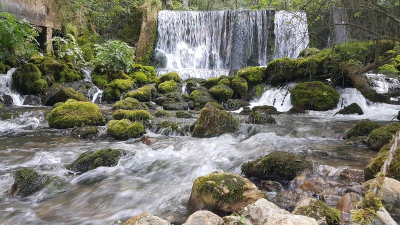Little river and waterfalls. Little river Vrelo (Godine) on the Tara mountain, national park in western Serbia. Translated in English the name of this river is royalty free stock photography