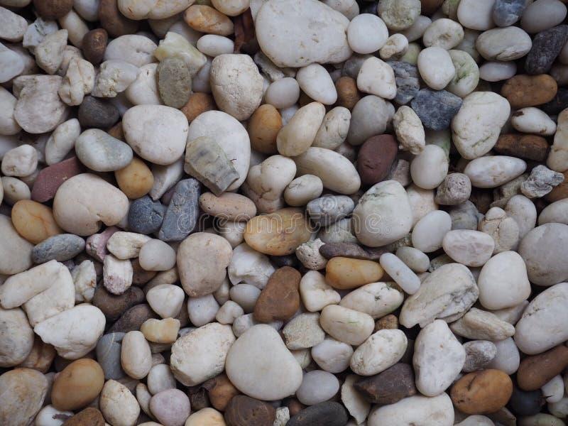 Little Rock para o fundo foto de stock