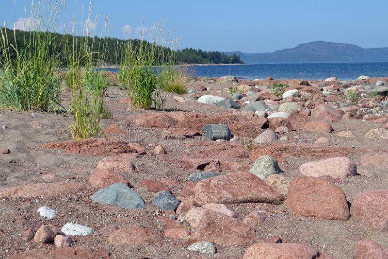 Little rocks, pebbles and sea grass on the beach of Storsand, Gulf of Bothnia, Sweden, Europe stock photo
