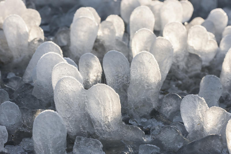 Little round icicles on the ground stock image