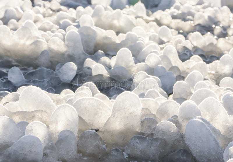 Little round icicles on the ground stock photography