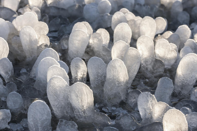 Little round icicles on the ground stock photo