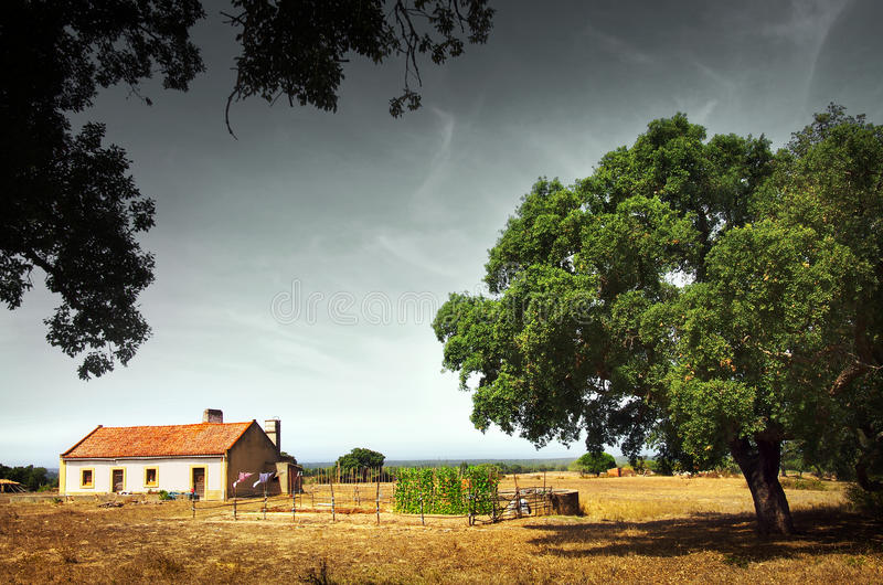 Download Little Rural House stock image. Image of country, perspective - 26606597