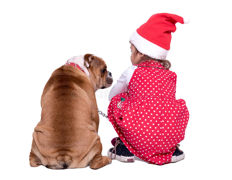 Little Santa and dog. Little Santa holding his pet,isolated on white background stock image