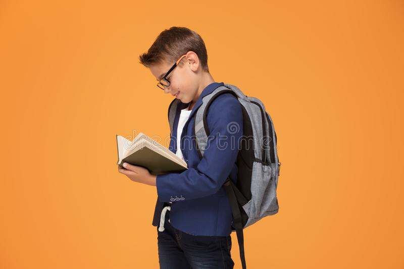 Little school boy with backpack and book. stock photo