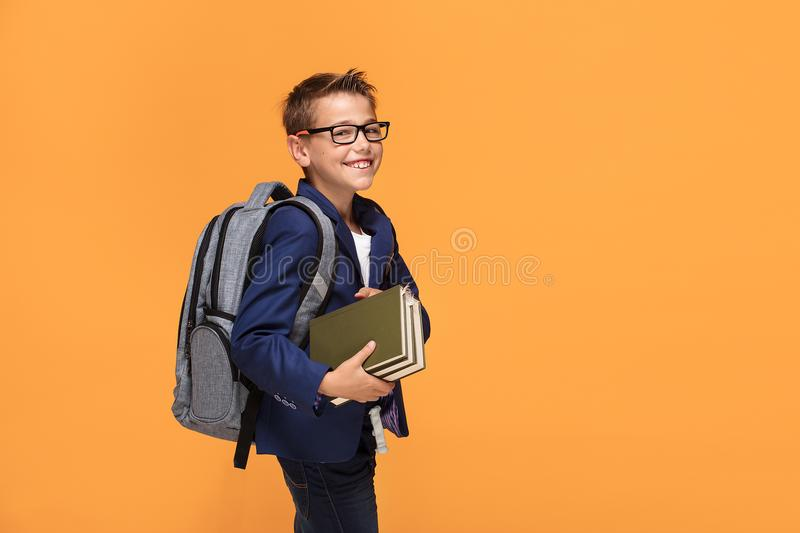 Little school boy with backpack and books. royalty free stock image
