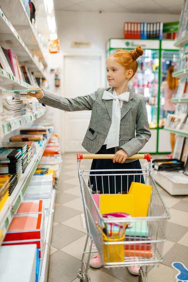 Little school girl with cart, stationery store stock photography