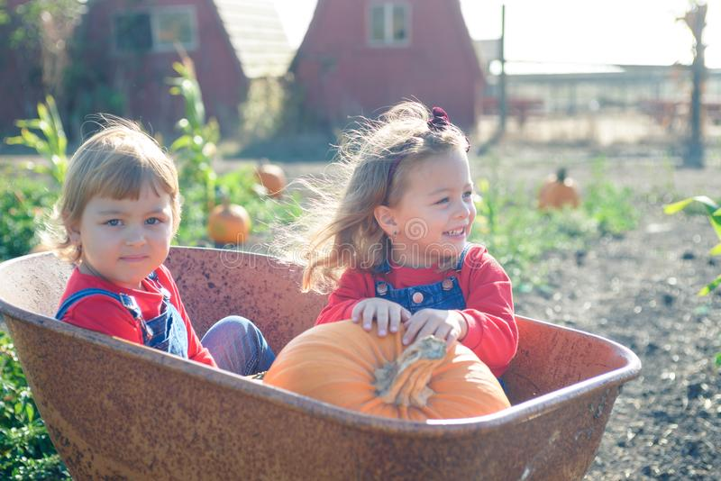 Happy girls sitting inside wheelbarrow at field pumpkin patch. Little sisters in jeans overalls sitting inside old wheelbarrow at farm field pumpkin patch royalty free stock image