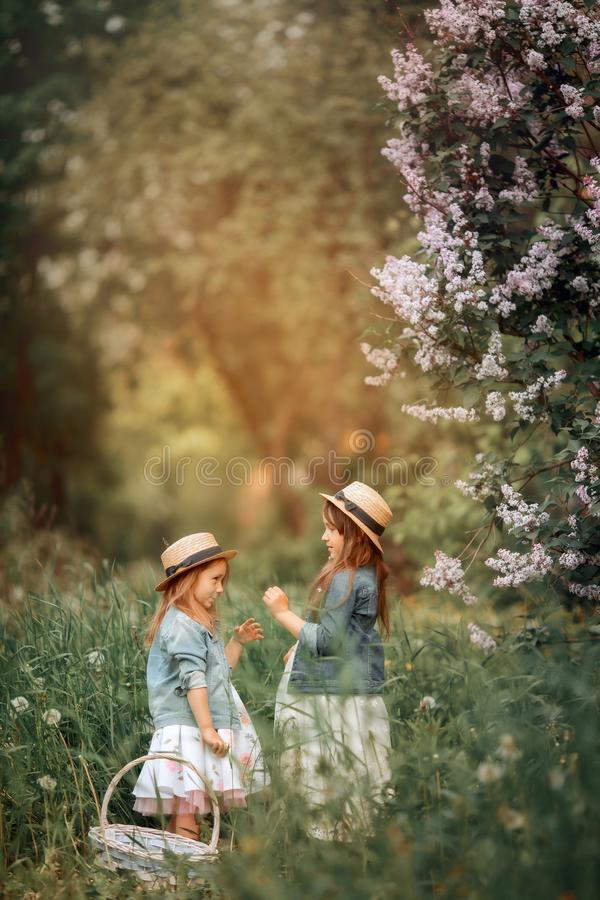 Little sisters outdoor portrait near lilac tree royalty free stock images