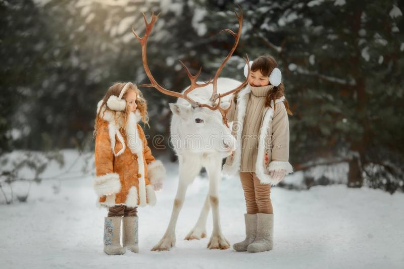 Portrait of beautiful Little girl in fur coat at winter forest stock photography
