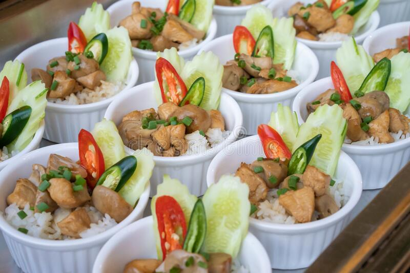 Little and small local food chicken with sauce over rice and decorated with spring onion and red - green chilli on top of it for stock image