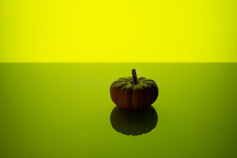 Little small pumpkin on a green background royalty free stock image