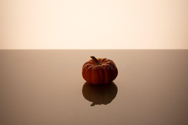 Little small pumpkin on a shiny dark background stock photos