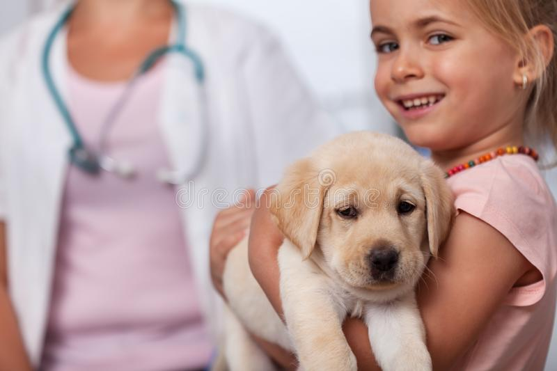Little girl holding her puppy dog at the veterinary doctor office - closeup. Little smiling girl holding her puppy dog at the veterinary doctor office - closeup royalty free stock photography