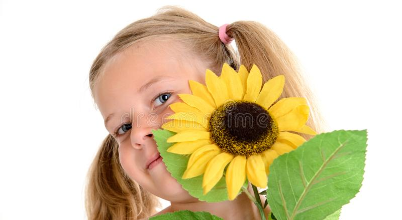 Little smiling girl with pigtails and sunflower stock photo