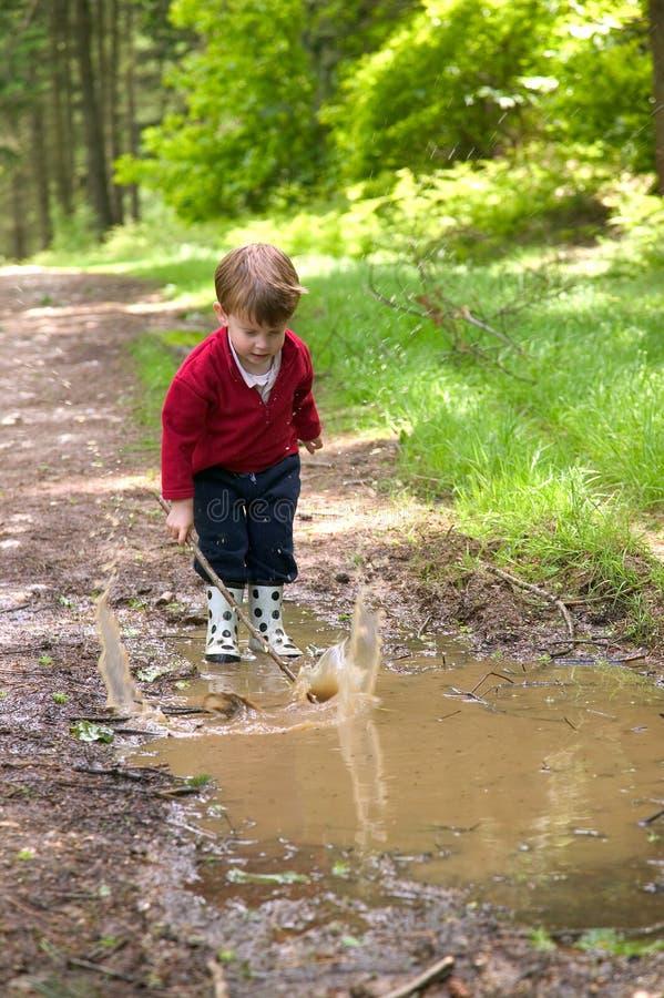 Little Splash royalty free stock image