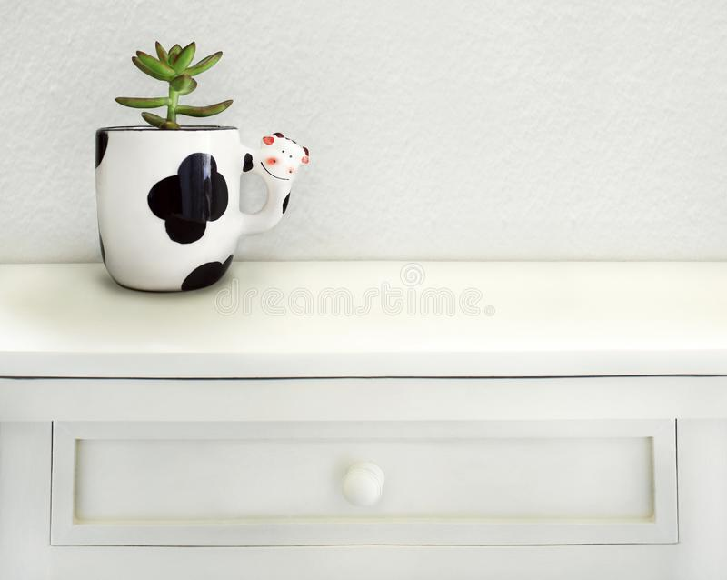 Little Succulent in a Funny Shape Cow Cup stock image