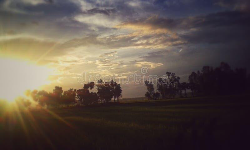 little sun royaltyfri foto