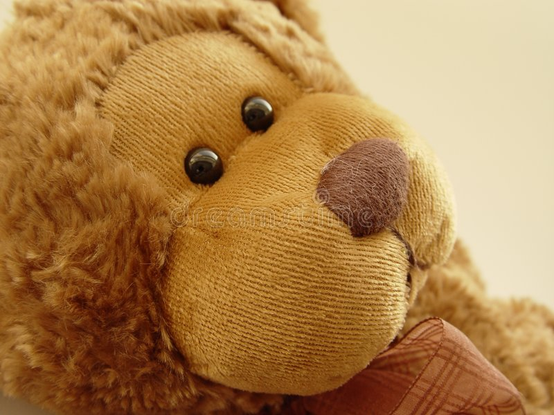 Download Little Teddy Bear stock photo. Image of abstract, household - 4412