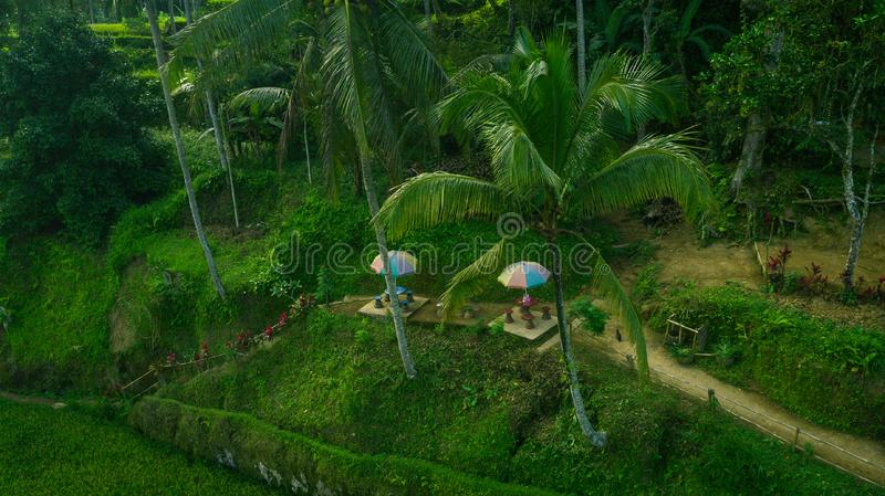 Little terrace to relax between the rice fields royalty free stock images