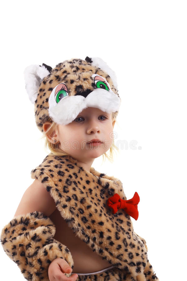 Little tiger stock photography