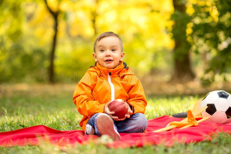 Little toddler boy on picnic in autumn park. Portrait of kid with smiling surprised face eating apple outdoors royalty free stock images