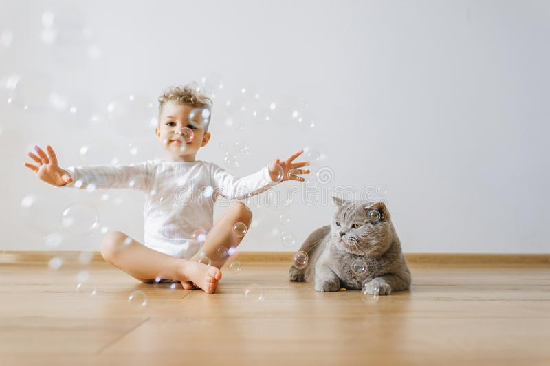 Little toddler boy in white bodysuit catching soap bubbles with grey cat near. By at home royalty free stock photos