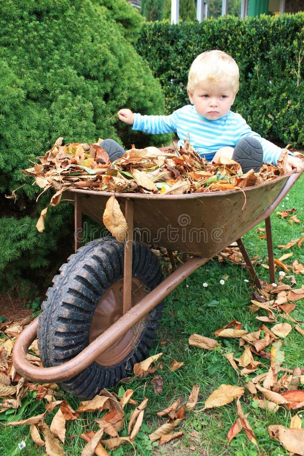 Little toddler in the garden royalty free stock photo