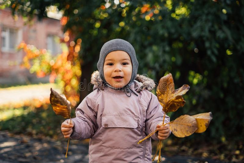 Little toddler girl in autumn park with yellow leaves royalty free stock photography